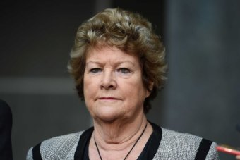 NSW Health Minister Jillian Skinner quits politics