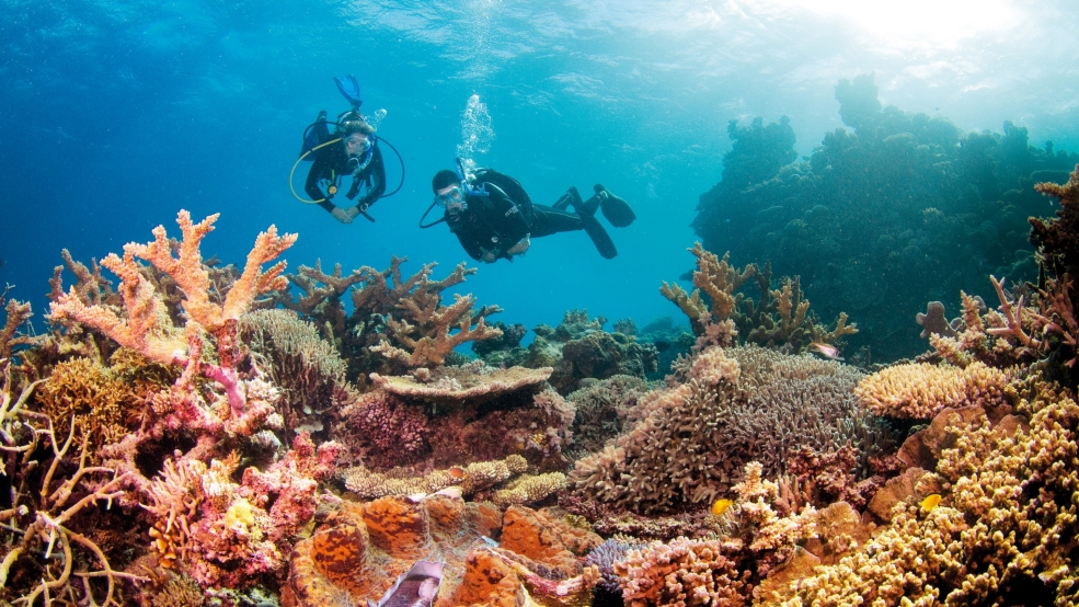 Great Barrier Reef not at risk