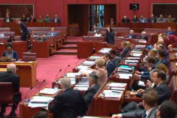 Pauline's Senate Burka Stunt