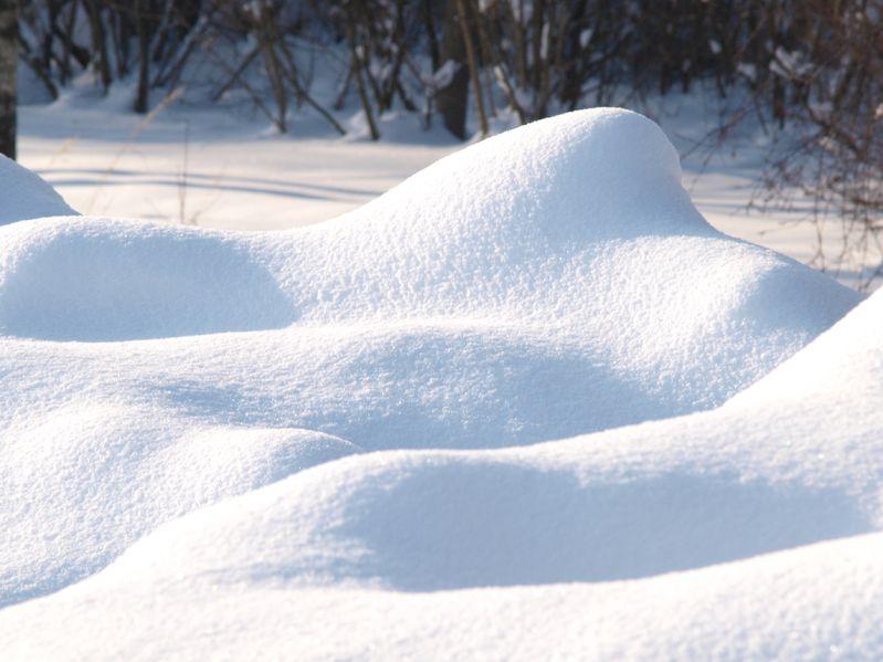 Best Snow Season Ever