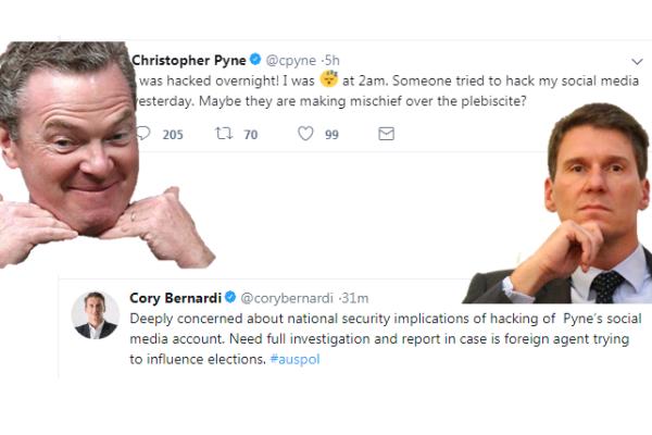 Cory Bernardi: Christopher Pyne blames hacker for Twitter porn mishap