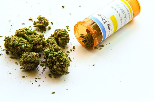 Article image for Doctors 'giving up' on prescribing medical cannabis due to red tape