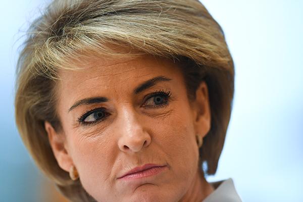 Article image for Liberal senator says Labor unleashed 'unrelenting campaign' on Michaelia Cash
