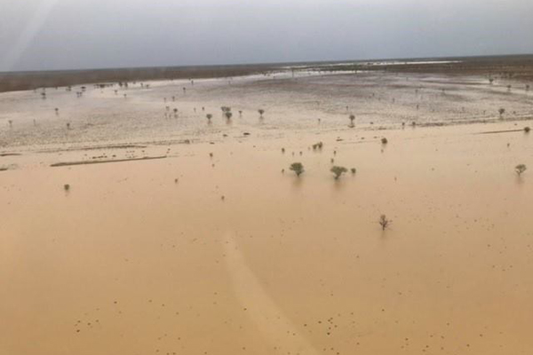 Relieved farmers get a drenching