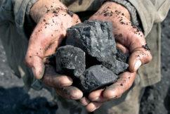 Coalition backbenchers lobby for coal under new forum