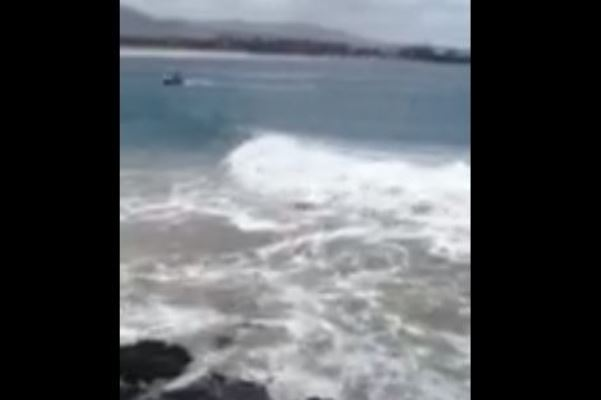 Article image for WATCH: Dangerous surf lashes Coffs Harbour boat ramp