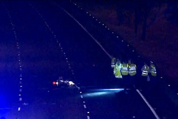 Motorcyclist and kangaroo killed in freak accident