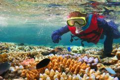 Australia breaks record tourism numbers