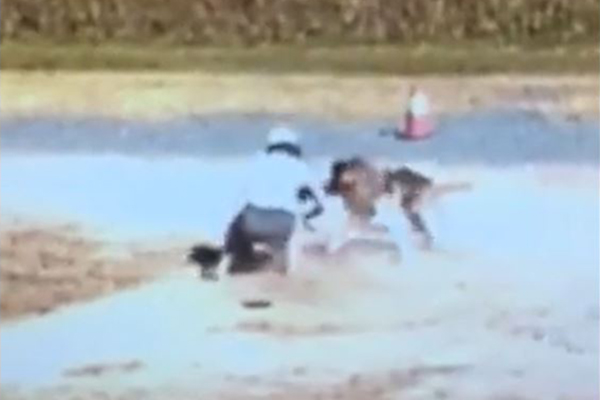 WATCH | Woman desperately wrestles to save her dog's life