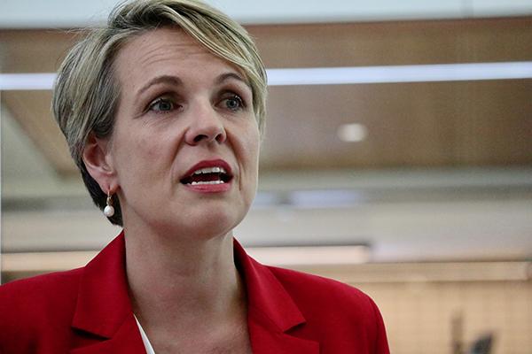 Article image for Deputy leader Tanya Plibersek makes Labor's strongest statement on boats