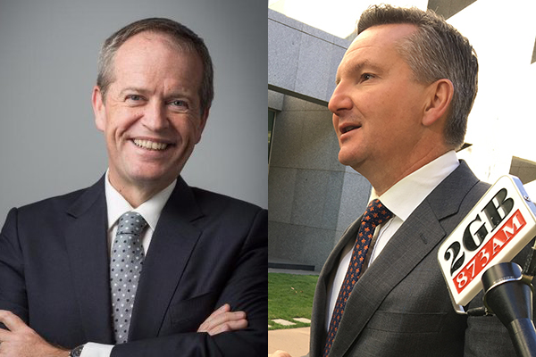 Shadow Treasurer doesn't deny Bill Shorten's tax plan was a captain's call