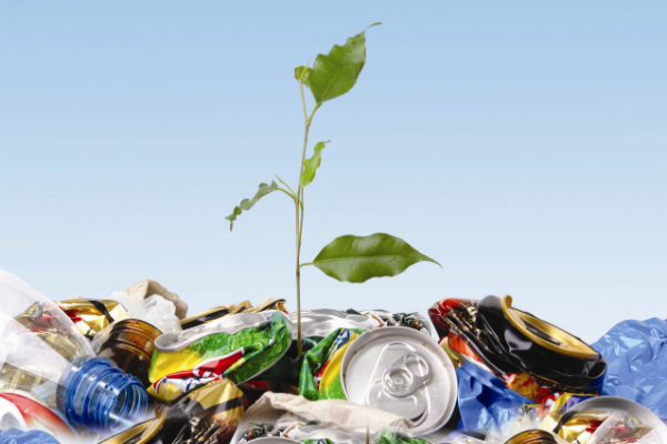 Calls not to let the new waste levy go to waste