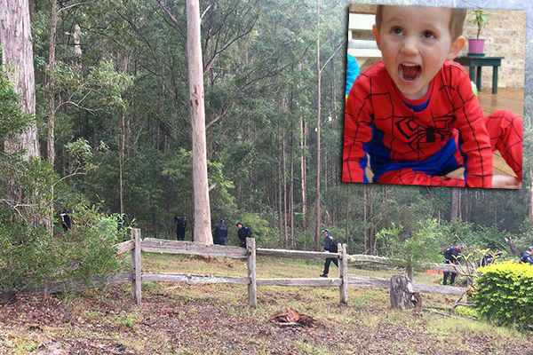 Article image for Police scouring bushland in fresh William Tyrrell 'forensic search'