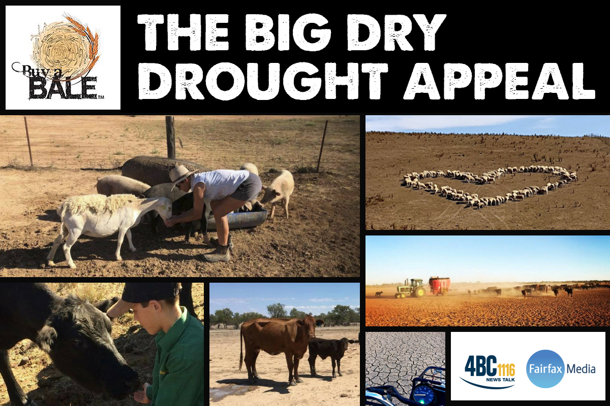 Article image for The Big Dry Drought Appeal