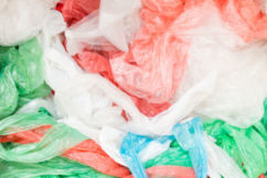 The plastic bag ban could be expanded