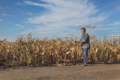 'Grim' rain forecast could leave farmers without income for another season