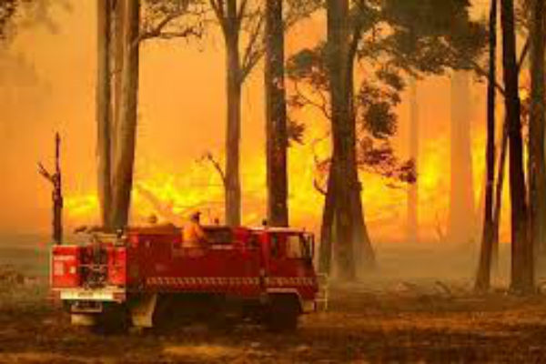 SEQ on bushfire alert
