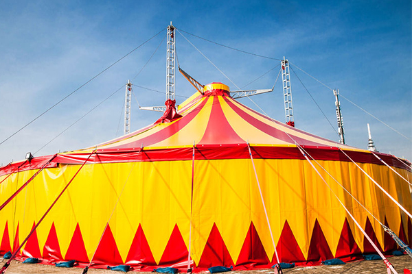 Activist groups leave an Australian circus fighting for its future