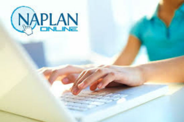 Concerns about online NAPLAN test results