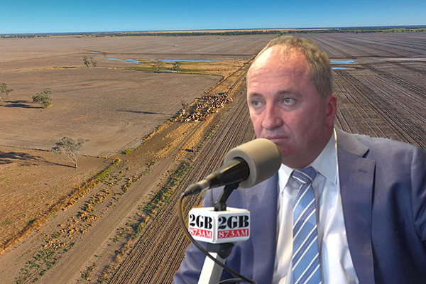 Article image for 'This will be contentious': Barnaby Joyce floats plan to combat drought