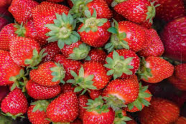 $1-million package for embattled strawberry growers