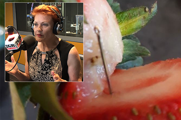 Article image for Pauline Hanson: 'This is a terror act, the farmers need a helping hand'