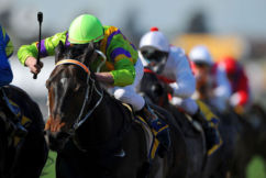 QLD racing industry threatens to strike over government's new gambling tax