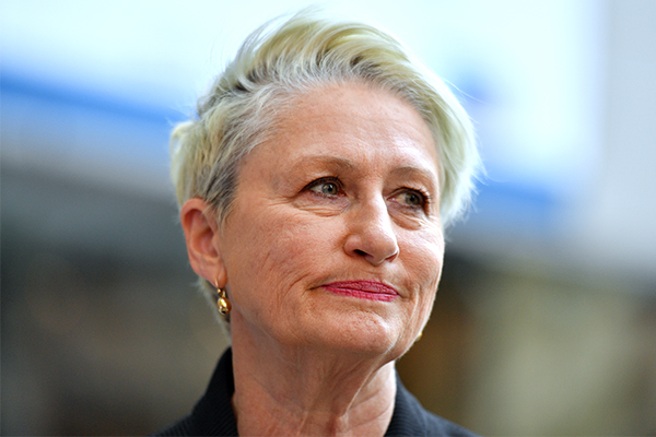 Kerryn Phelps: The past 48 hours have been a 'white-knuckle ride'