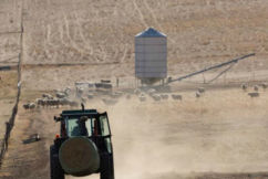 Farmers continue to struggle through nation's worst drought