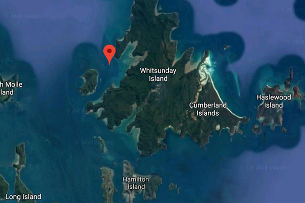 Shark attack: Man dies after being mauled in the Whitsundays