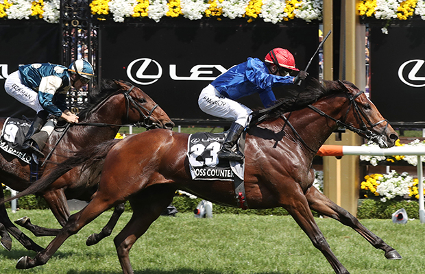 Article image for 2018 Melbourne Cup: Cross Counter wins dramatic Cup, ending Godolphin drought