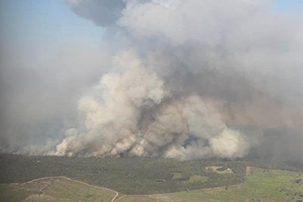 Article image for Firefighters gain upper hand on bushfire near Rockhampton