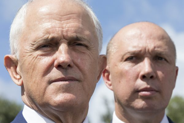 'He doesn't have a political bone in his body': Dutton unleashes on Turnbull
