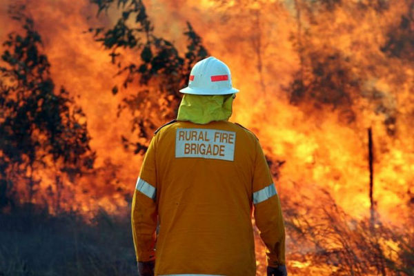 Farmers counting the cost of Qld bushfires