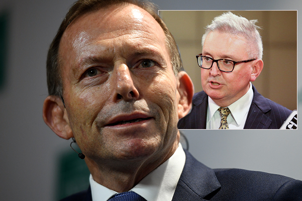 Article image for NSW Energy Minister had 'a brain snap', Abbott says
