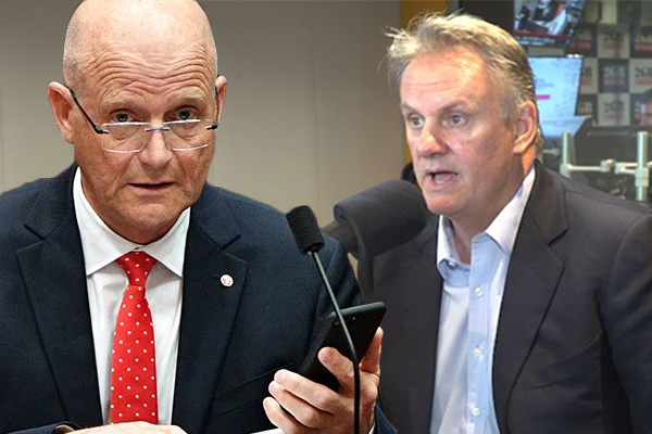 David Leyonhjelm admits 'it's easier' to get elected to state parliament but insists that's not behind his switch