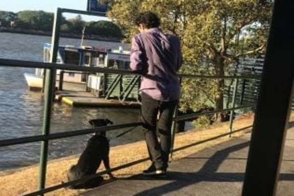 Push for pooches on public transport