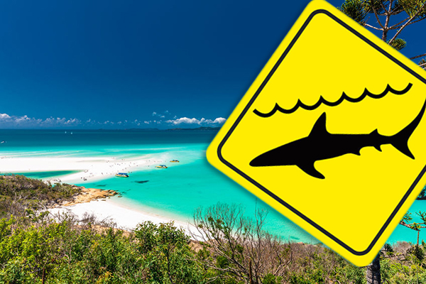 Shark attacks two people, including a child, at Hamilton Island