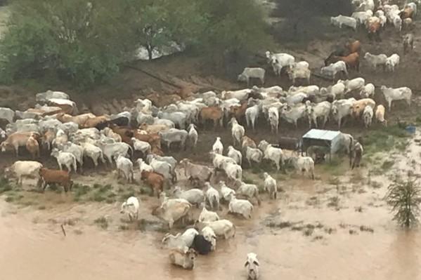 Battling Queensland farmers hit hard by floods
