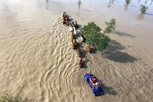 Article image for Shocking vision of the flood devastation at Cloncurry
