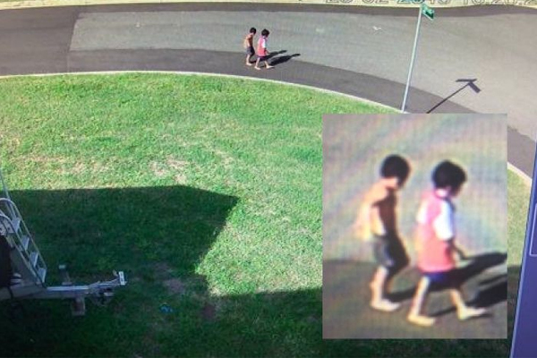 Missing brothers, aged 3 and 5, found dead in Townsville river