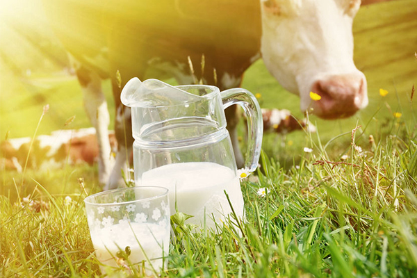 Coles and Aldi raise their milk price in support of dairy farmers