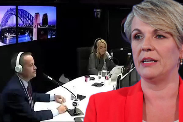 Tanya Plibersek contradicts Bill Shorten's electric car claim