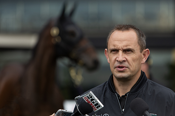 'Utter relief': Chris Waller explains what's next for Winx