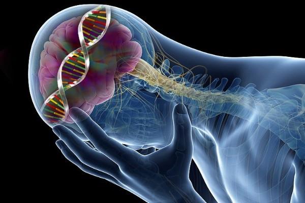 Decoding the genetics of mental illness