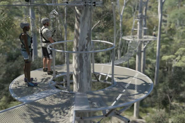 The book finally closed on the Mt Coot-tha Zipline