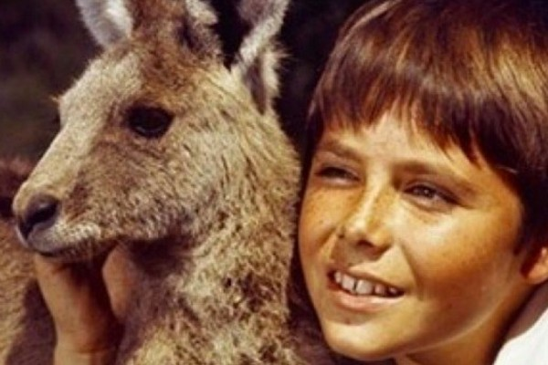 Online exhibition celebrates 50 years of Skippy