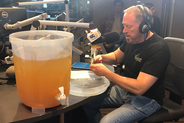 Article image for WATCH | How to brew your own beer at home