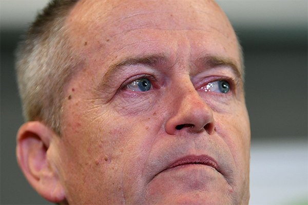 'Very upsetting and traumatic': Anthony Albanese defends Bill Shorten