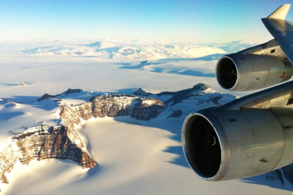 Taking flight for the frozen continent